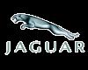 Jaguar Chiptuning Stuttgart - Logo